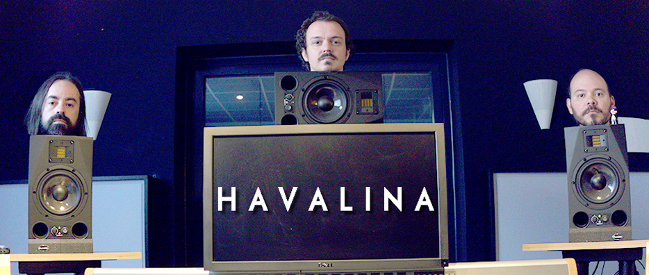 Havalina Earprotech